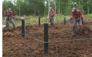 Как построить дом на болотистой местности