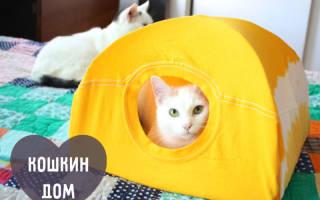 Домик для кошки из футболки и вешалки