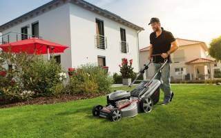 Как выбрать газонокосилку электрическую для дачи